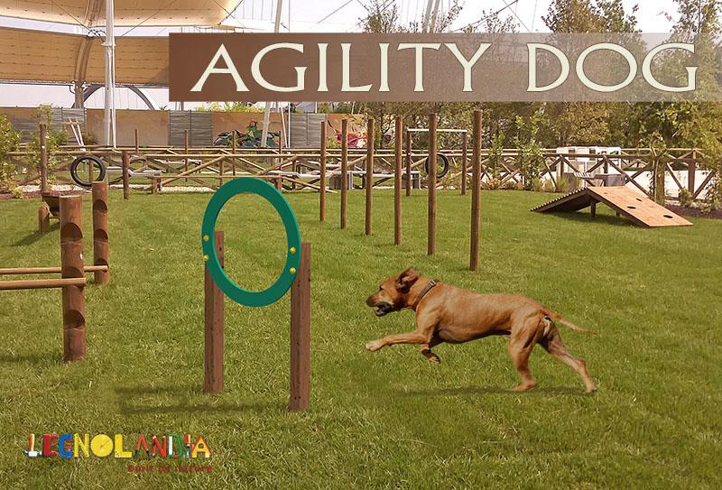 Percorsi per Agility Dog aree sgambamento cani