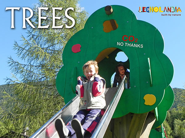 Playground Trees Catalogue