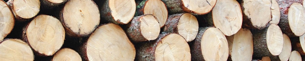 Wood, clean energy and environmental protection